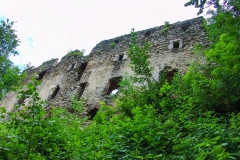 Burgruine-Gomarn-Bad-St-Leonhard-Kaernten-040