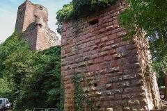 Burg Kintzheim mit der Greifvogelwarte im Elsass