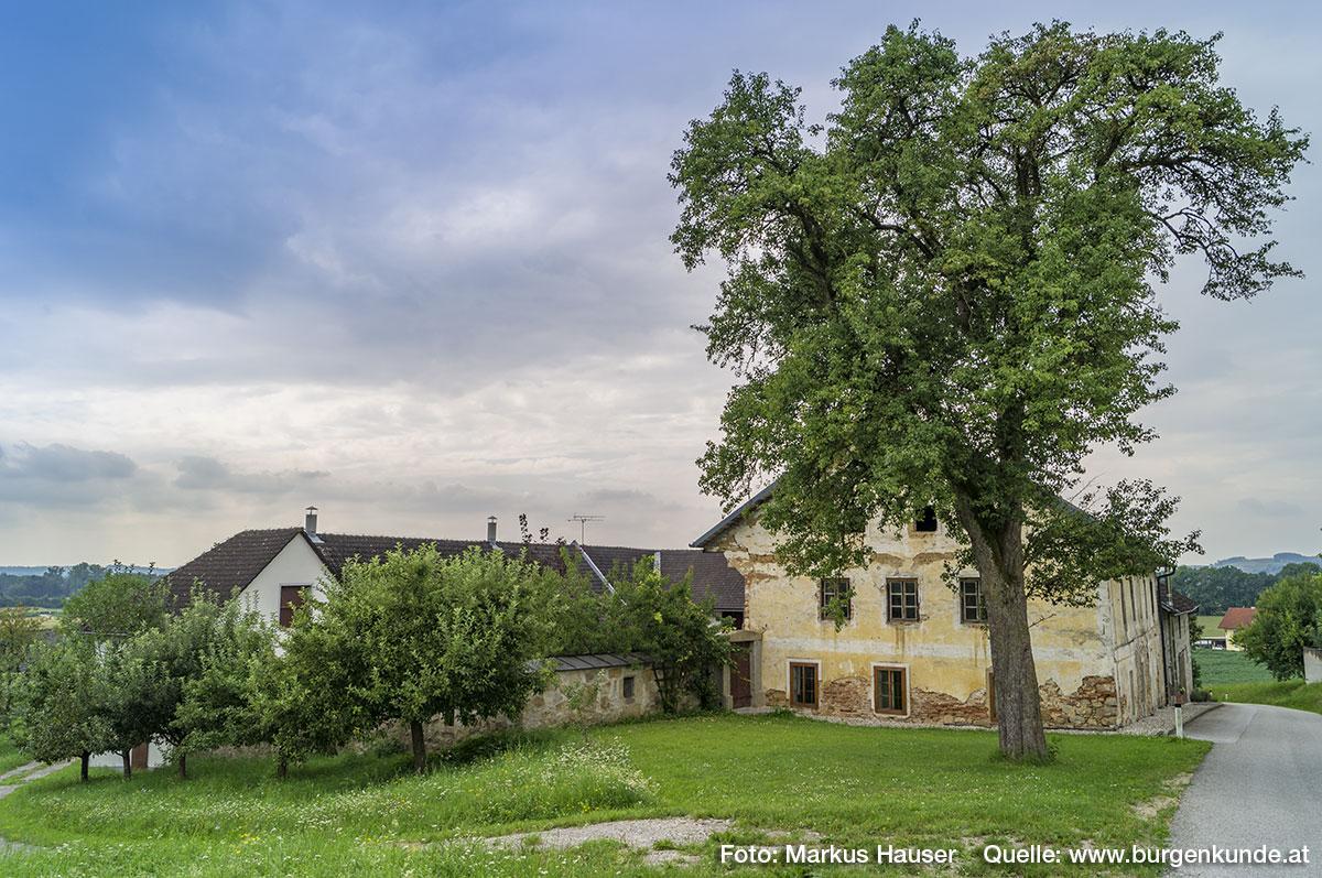 Die niedrige, unverputzte Mauer hinter den kleineren Obstbäumen links unten ist lt. den heutigen Besitzern der älteste Teil der Anlage.