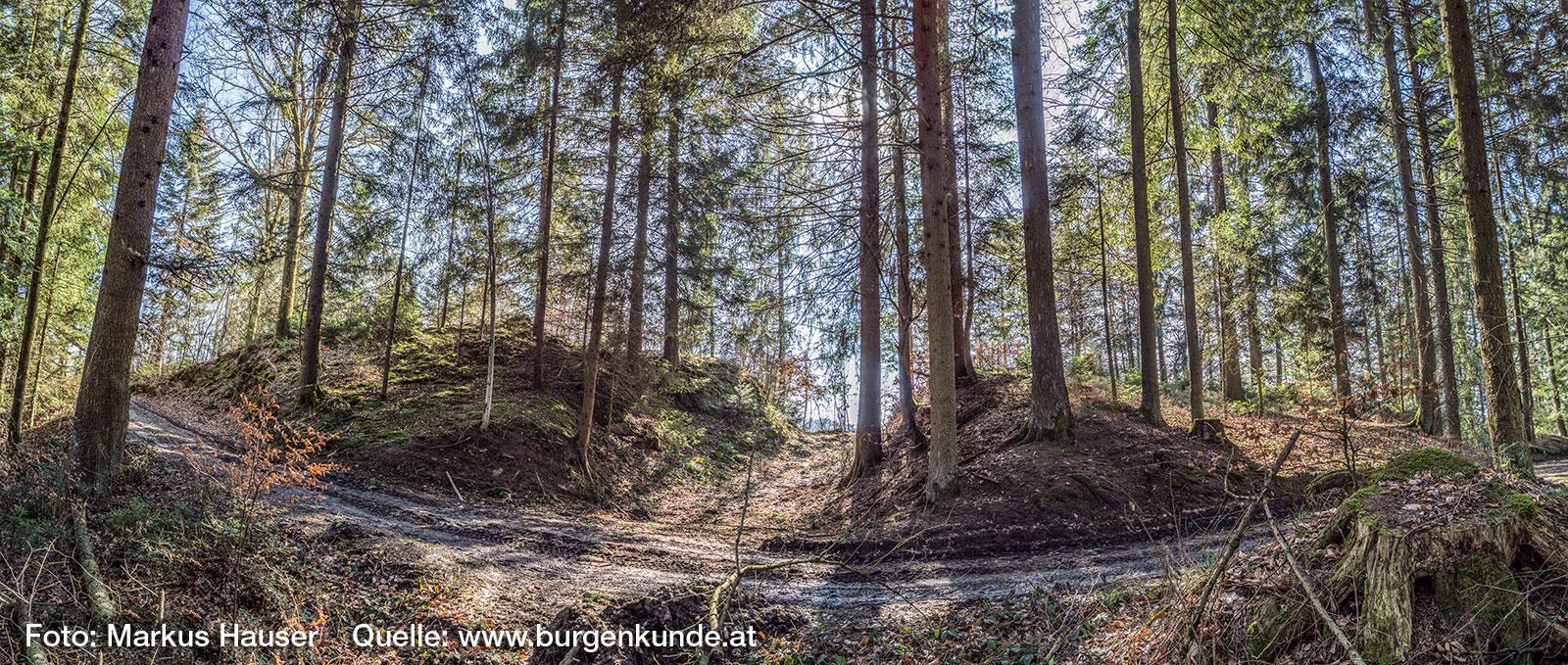 Graben am Höhenrücken vor der Ruine Haichenbach