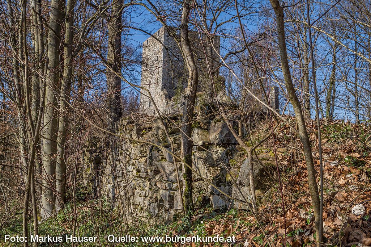 Am deutlichsten kann man die Ringmauer am äußersten Ende der spitz zulaufenden Vorburg sehen.