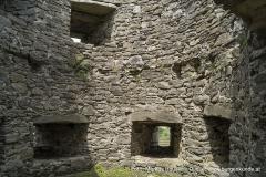Die Rundtürme der nordöstlichen Vorburg waren für Feuerwaffen konzipiert, wie die Bauart der Schießscharten belegt.