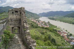 Vom Palas aus hat man einen ganz guten Blick über das zur Donau hin abfallende Gelände. Hier wurden offenbar Vorwerke des Mittelalters durch Weinbauterrassen überbaut.