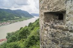 Die trichterförmigen Schießscharten des Rundturmes an der Südspitze der Ruine Hinterhaus. Unterhalb die Donau.