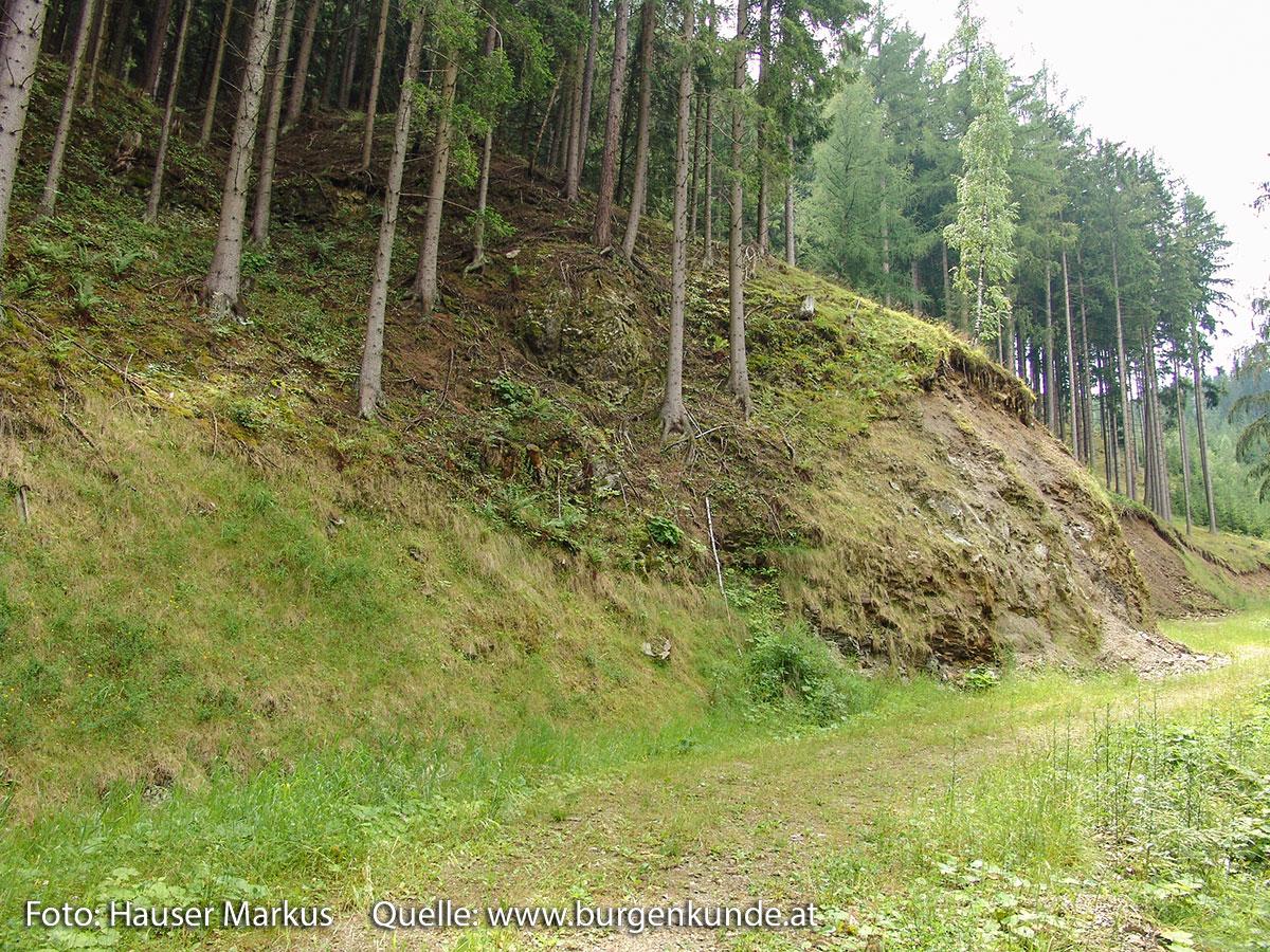 Schlossruine-Reichenfels-Wolfsberg-Kaernten-02