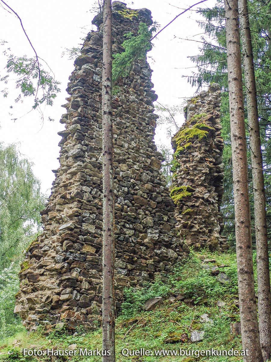 Schlossruine-Reichenfels-Wolfsberg-Kaernten-04