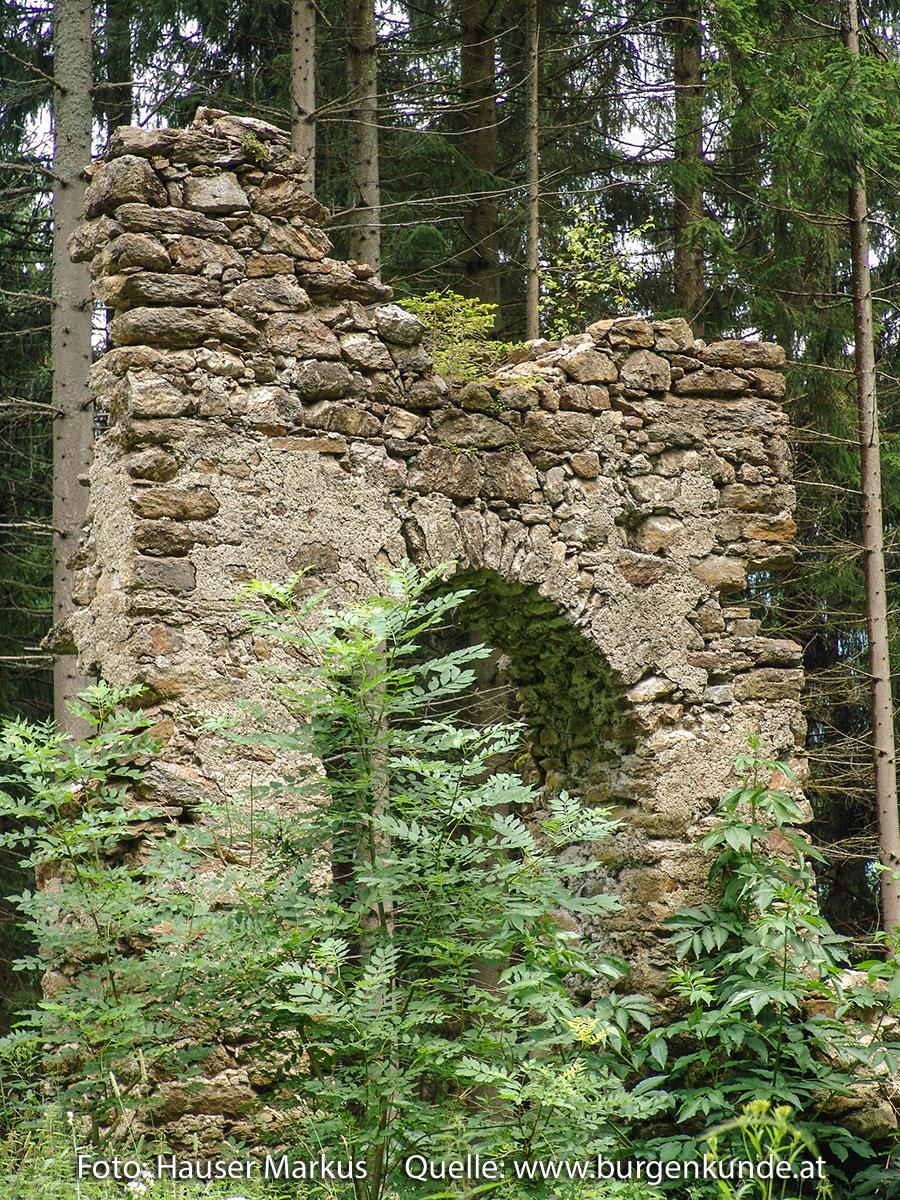 Schlossruine-Reichenfels-Wolfsberg-Kaernten-06