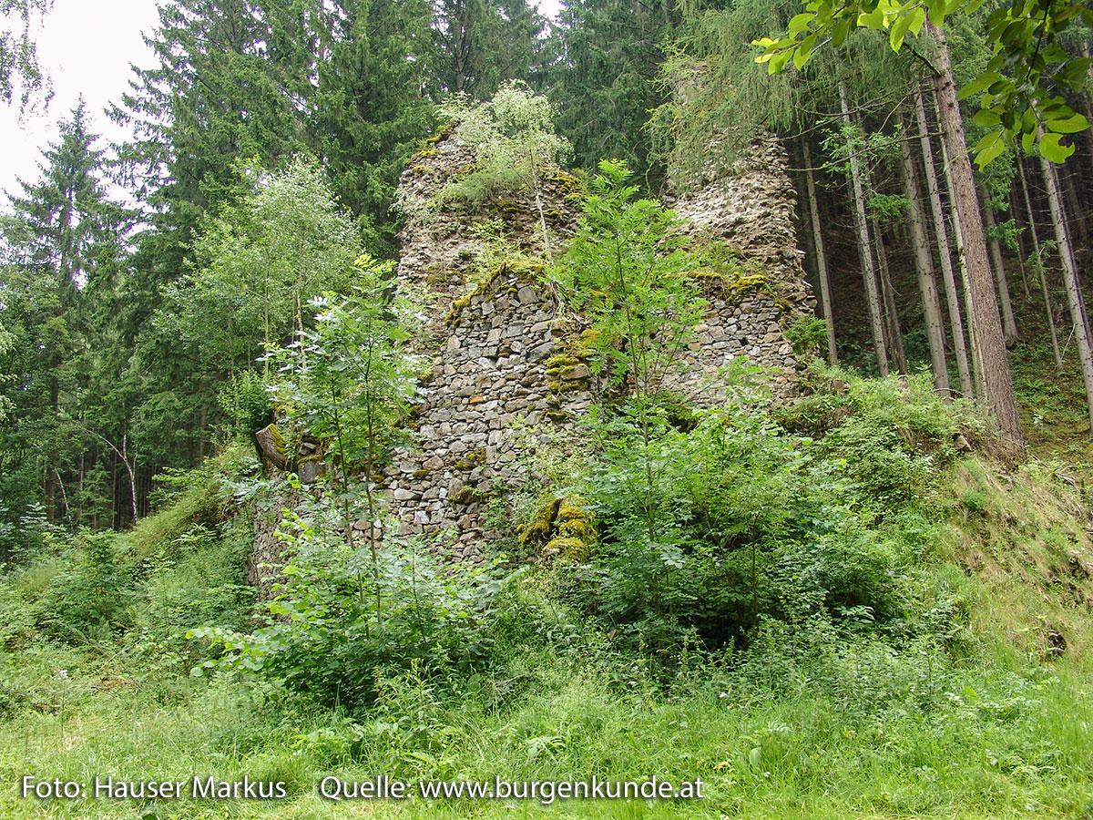 Schlossruine-Reichenfels-Wolfsberg-Kaernten-07