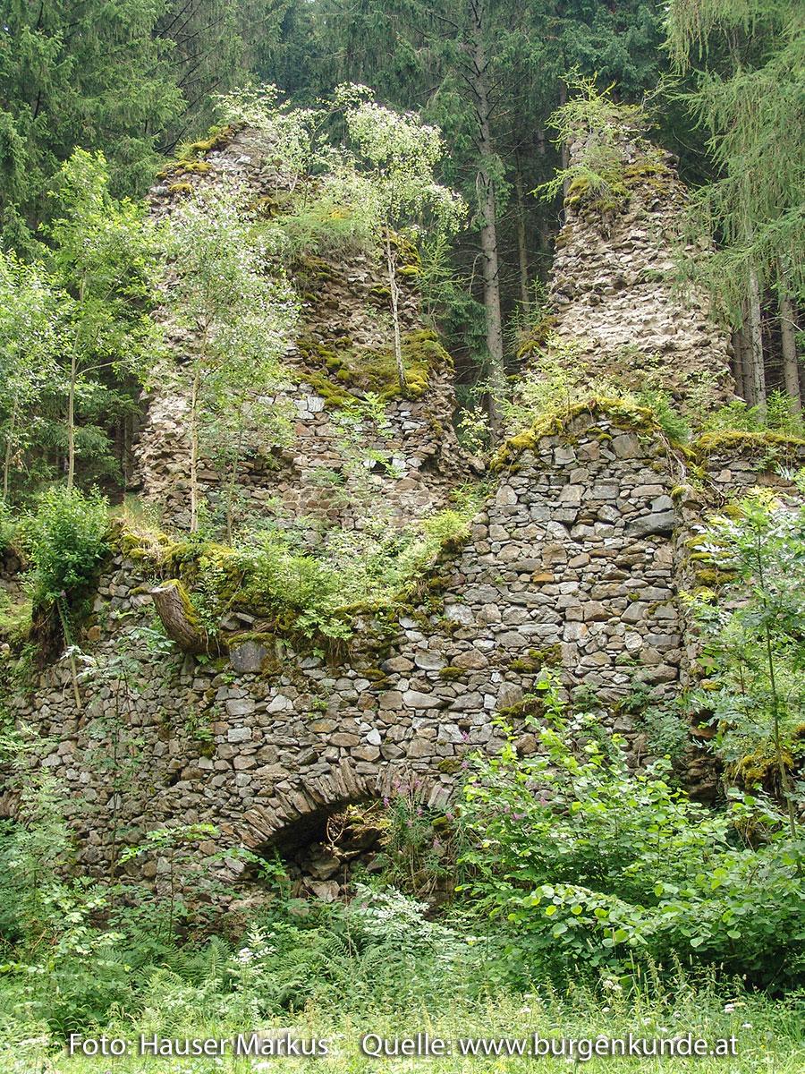 Schlossruine-Reichenfels-Wolfsberg-Kaernten-10