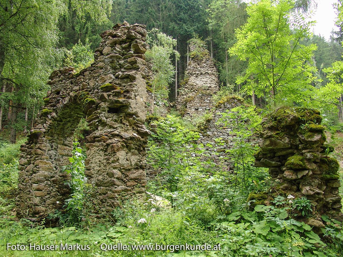 Schlossruine-Reichenfels-Wolfsberg-Kaernten-11