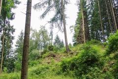 Schlossruine-Reichenfels-Wolfsberg-Kaernten-01