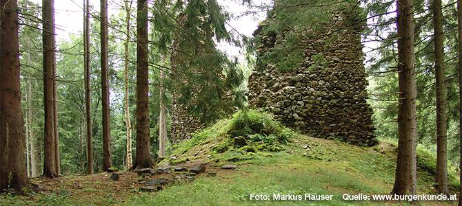 Schlossruine Reichenfels im Bezirk Wolfsberg (Kärnten)