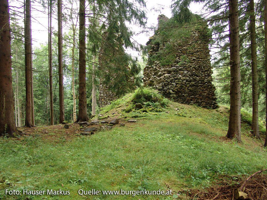 Schlossruine Reichenfels Bezirk Wolfsberg Kärnten
